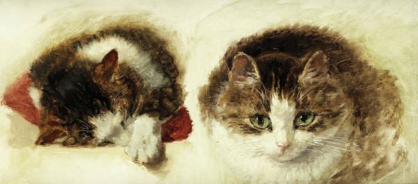 Crazy Cat Painting - Cats by Henriette Ronner-Knip