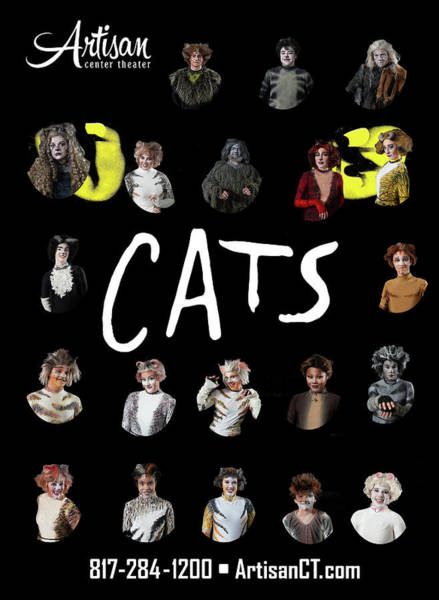 Photograph - Cats Poster 1 by Alan D Smith