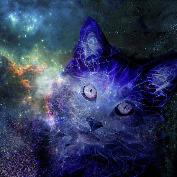 Digital Art - Cats Rule The Universe by Peggy Collins