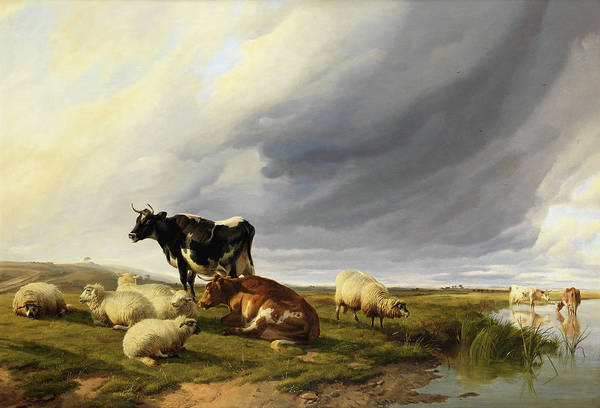 Breeding Painting - Cattle And Sheep In A Watermeadow by Thomas Sidney Cooper