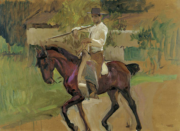 Wall Art - Painting - Cattle-driver, Seville, 1914 by Joaquin Sorolla y Bastida