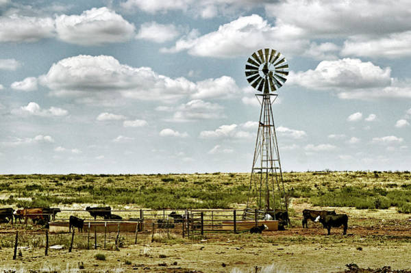 Photograph - Cattle Ranch Watering Windmill by Bill Swartwout Photography