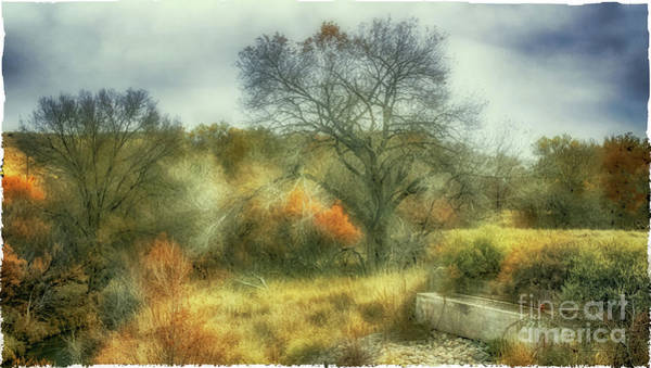 Photograph - Cattle Trough by Natural Abstract Photography