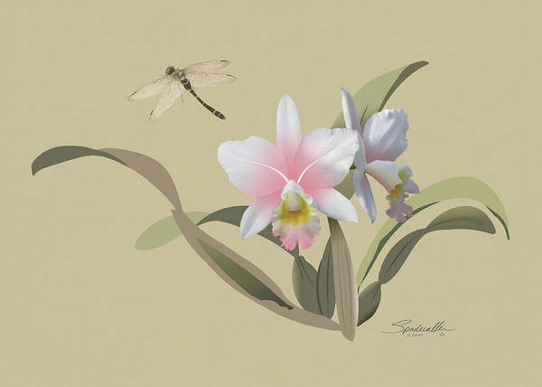 Wall Art - Digital Art - Cattleya Orchid And Dragonfly by M Spadecaller