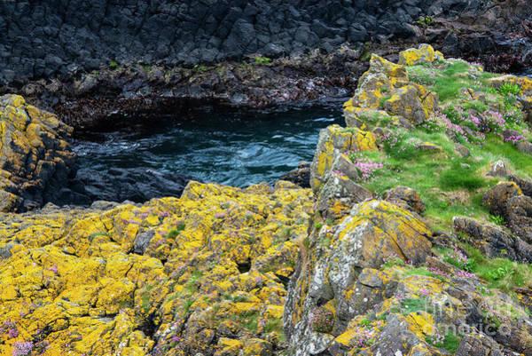 Photograph - Causeway Coast Color by Bob Phillips