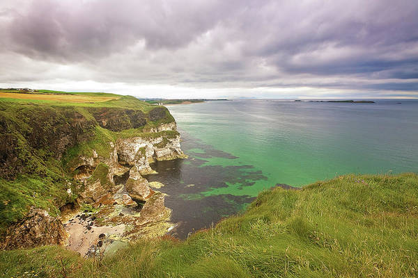In The Grass Photograph - Causeway Coast by The Edge Digital Photography
