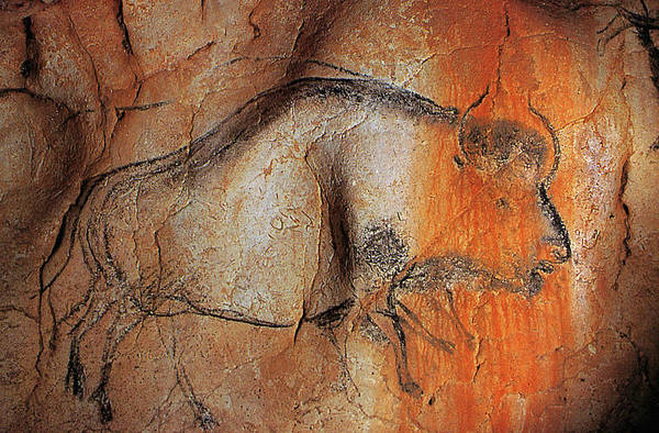 Photograph - Cave Painting 12 by Andrew Fare
