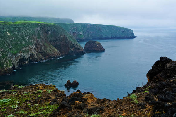 Photograph - Cavern Point Santa Cruz Island by Kyle Hanson