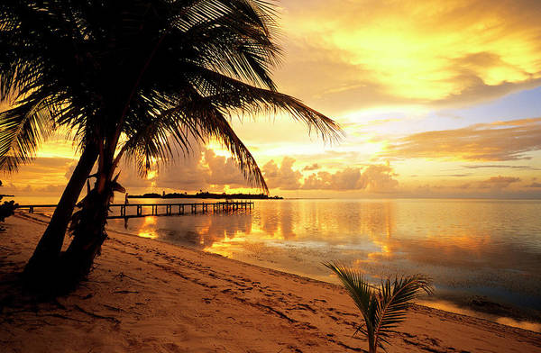 Greater Antilles Photograph - Cayman Islands, Little Cayman, Sunrise by Renault Philippe / Hemis.fr