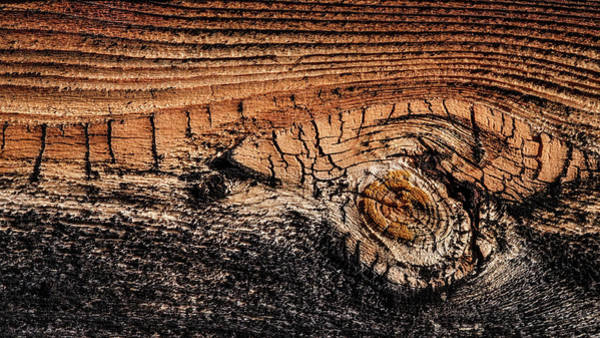 Photograph - Cedar Siding Version 5 by Glenn DiPaola
