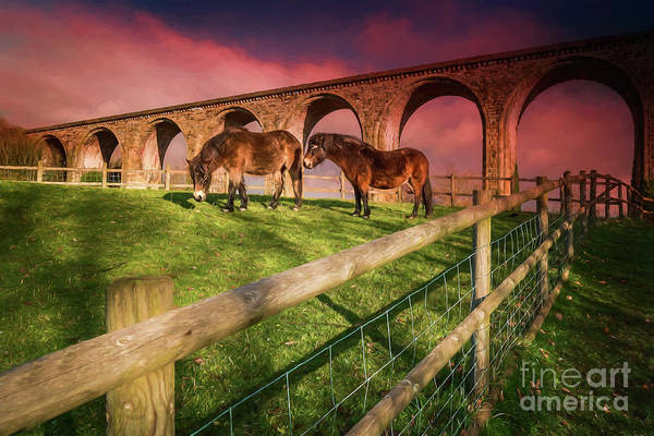 Wall Art - Photograph - Cefn Viaduct Horses At Sunset by Adrian Evans