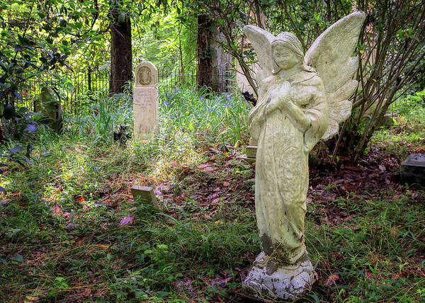 Photograph - Cemetery Angel by Susan Rissi Tregoning