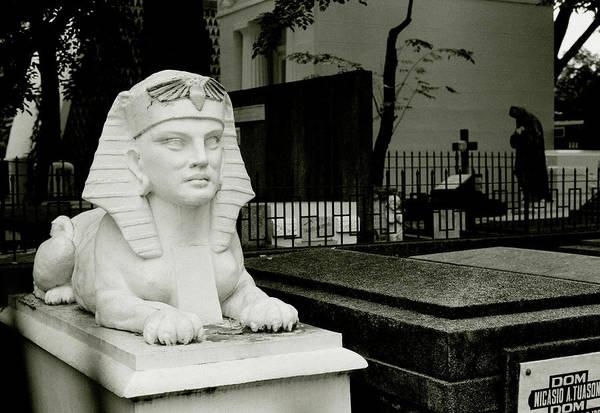 Photograph - Cemetery Sphinx by Shaun Higson