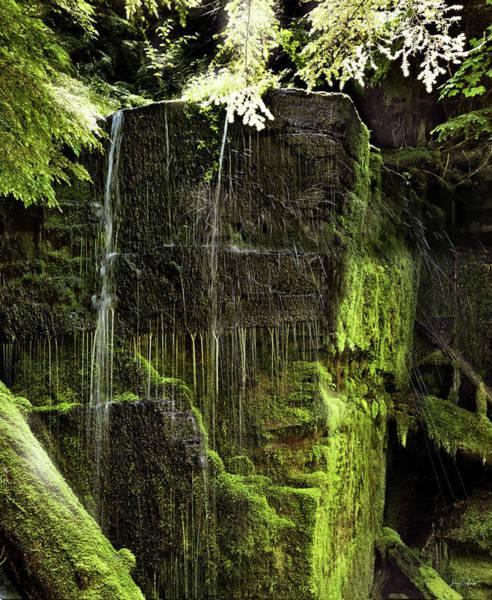 Photograph - Centennial Falls by Leland D Howard