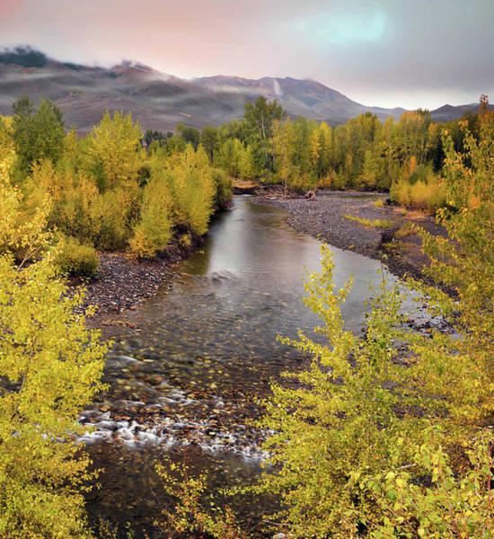 Photograph - Central Idaho Autumn by Leland D Howard