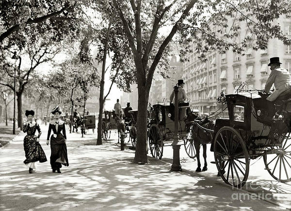 Photograph - Central Park - 1900 by Doc Braham