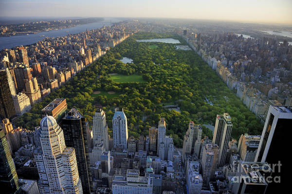 Office Buildings Wall Art - Photograph - Central Park Aerial View, Manhattan by T Photography