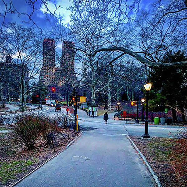 Wall Art - Photograph - Central Park At Night, New York, New York by Madeline Ellis