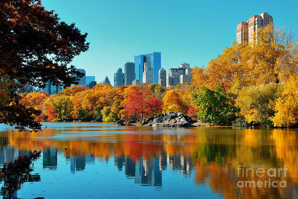 Water Tree Wall Art - Photograph - Central Park Autumn And Buildings by Songquan Deng