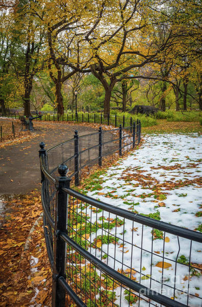 Wall Art - Photograph - Central Park Fence by Inge Johnsson