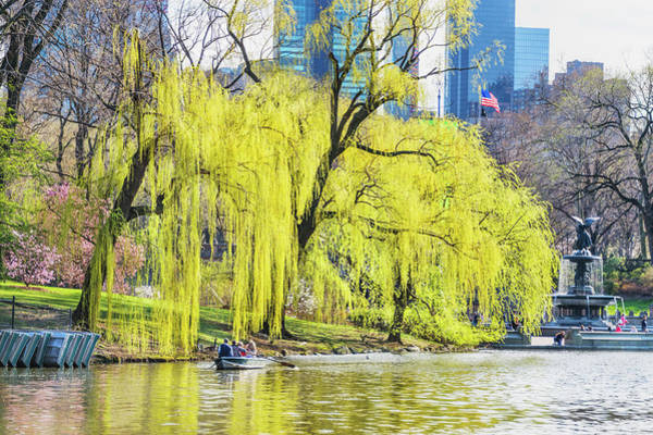 Bethesda Fountain Photograph - Central Park In Spring With Skyline by Mitchell Funk