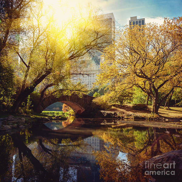 Travel Destinations Wall Art - Photograph - Central Park Pond And Bridge. New York by Maglara