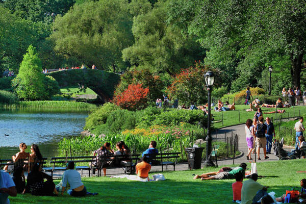 Public Land Photograph - Central Park by Visions Of Our Land