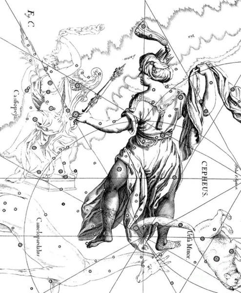 Wall Art - Drawing - Cepheus, The Boreal Constellation Of The King Of Ethiopia Or The Father Of Andromeda by Johann Hevelius