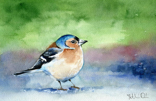 Painting - Chaffinch by Dora Hathazi Mendes