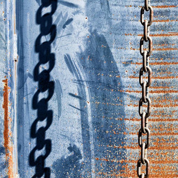 Wall Art - Photograph - Chain Shadow by Carol Leigh