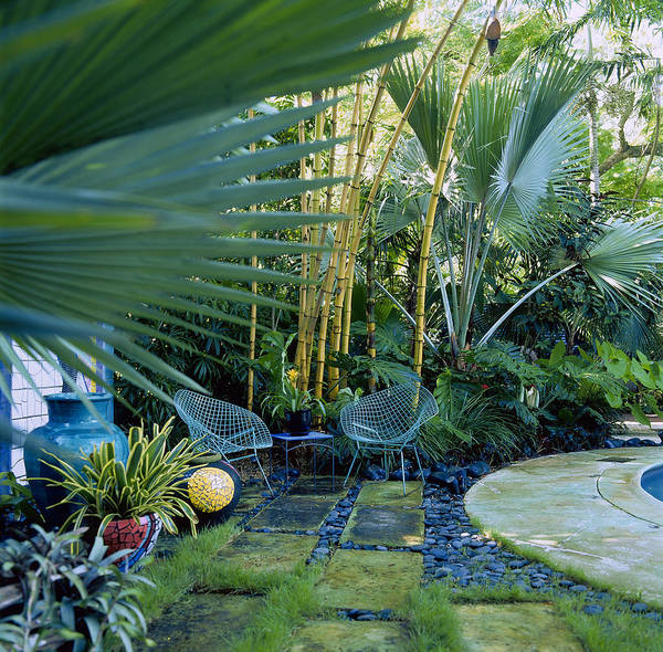 Fortified Wall Art - Photograph - Chairs In Tropical Garden, Miami by Richard Felber