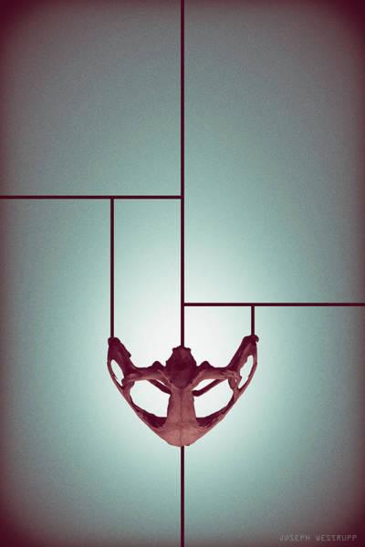 Figurative Abstract Photograph - Chalice - Abstract Geometric Bone Art by Joseph Westrupp