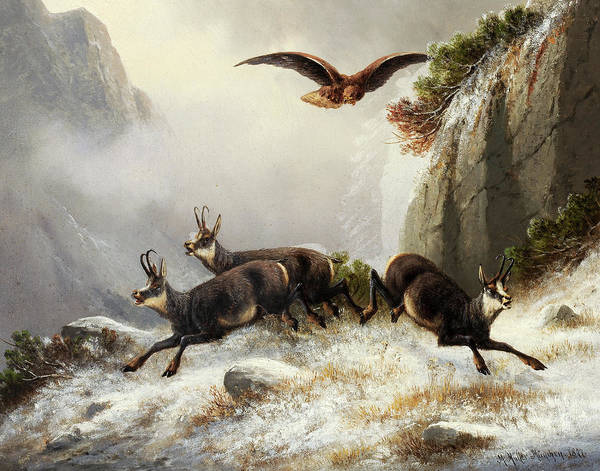 Wall Art - Painting - Chamois, Persecuted By An Eagle, 1877 by Moritz Muller