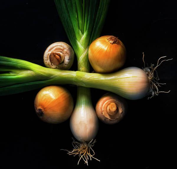 Scallion Photograph - Champs And Onions by Inigo Cia