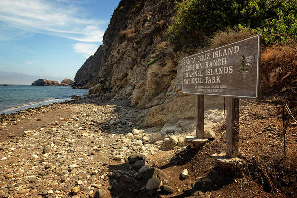 Santa Cruz Island Wall Art - Photograph - Channel Islands National Park Viii by Ricky Barnard