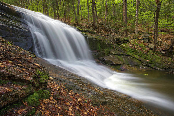 Photograph - Chapel Brook Falls by Juergen Roth
