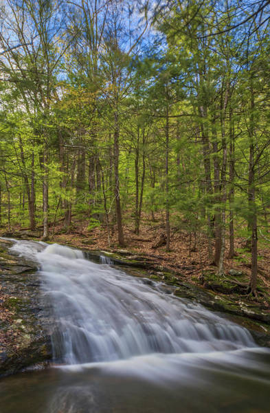 Photograph - Chapel Falls At Chapel Brook Reservation by Juergen Roth