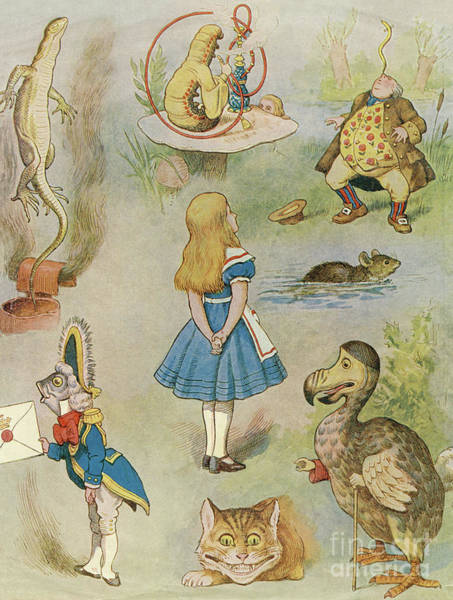 Wall Art - Drawing - Characters From Alice In Wonderland  by John Tenniel