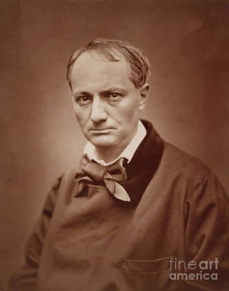 Wall Art - Photograph - Charles Baudelaire, French Poet, Portrait Photograph  by Goupil