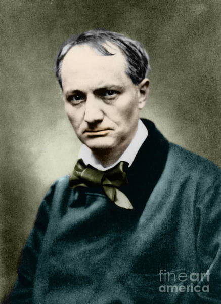 Wall Art - Photograph - Charles Baudelaire, French Writer, Photo by French School