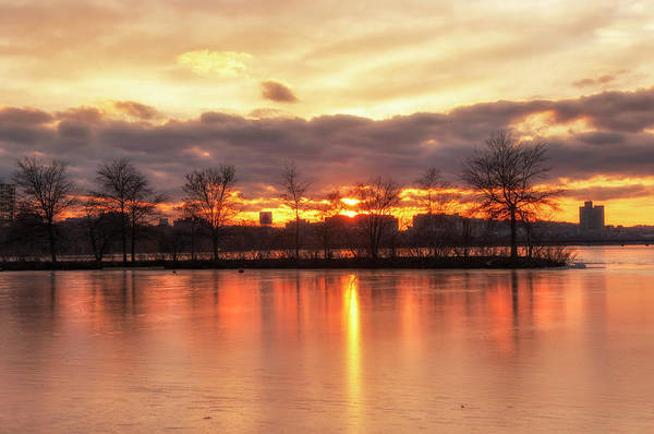 Photograph - Charles River Esplanade Sunset by Joann Vitali