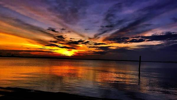 Photograph - Charleston Gold by Jack Wilson