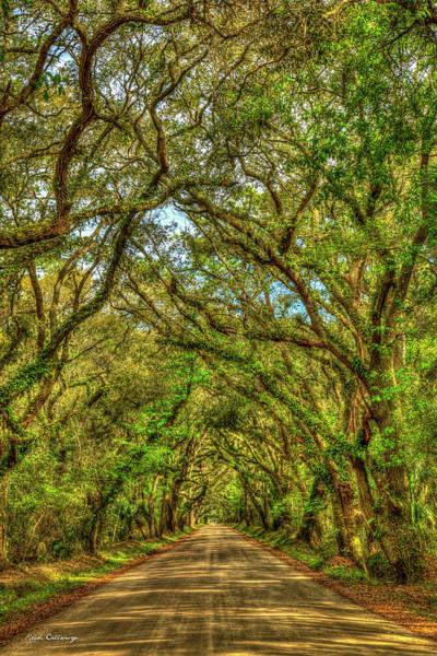 Photograph - Charleston S C Majestic Edisto Island Botany Bay Road  South Carolina Landscape Art by Reid Callaway