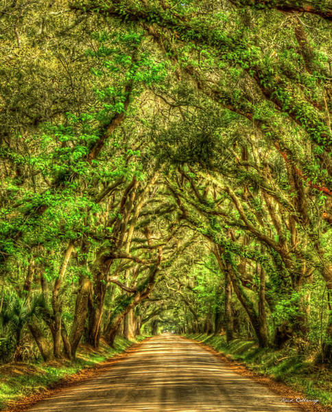Photograph - Charleston S C The Tree Tunnel Botany Bay Road Edisto Island South Carolina Landscape Art by Reid Callaway