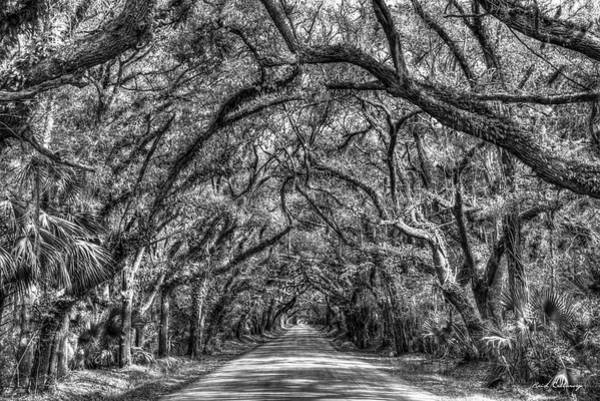 Photograph - Charleston S C Shadows B W Botany Bay Road Edisto Island South Carolina Landscape Art by Reid Callaway