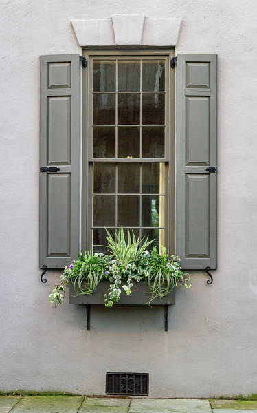 Photograph - Charleston Window by Ree Reid