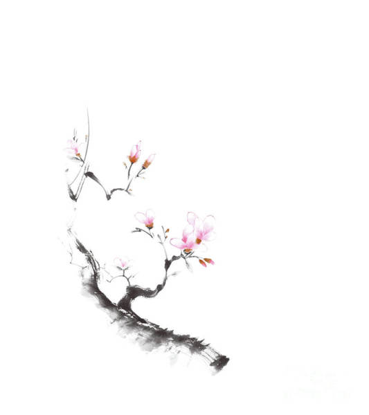 Blooming Tree Mixed Media - Charming Sumi-e Illustration Of A Budding Sakura Branch With Gen by Awen Fine Art Prints