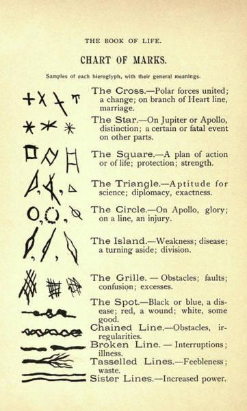 Meditation Drawing - Chart Of Marks by Alesha Sivartha