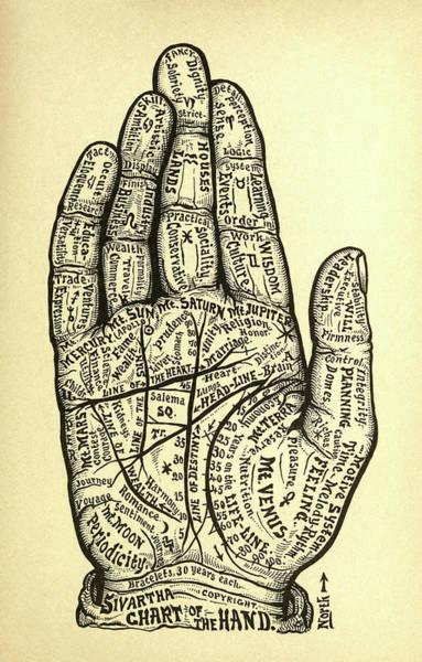 Destiny Drawing - Chart Of The Hand by Alesha Sivartha