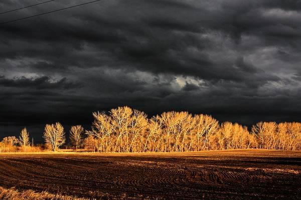 Photograph - Chasing Light by David Matthews